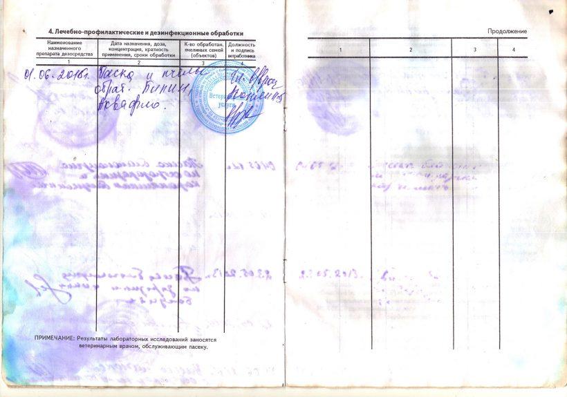 паспорт-5