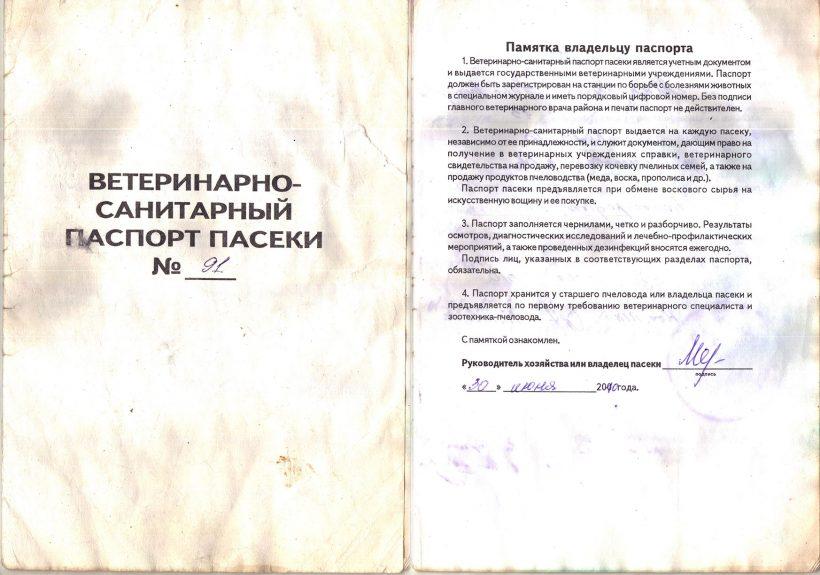 паспорт-1