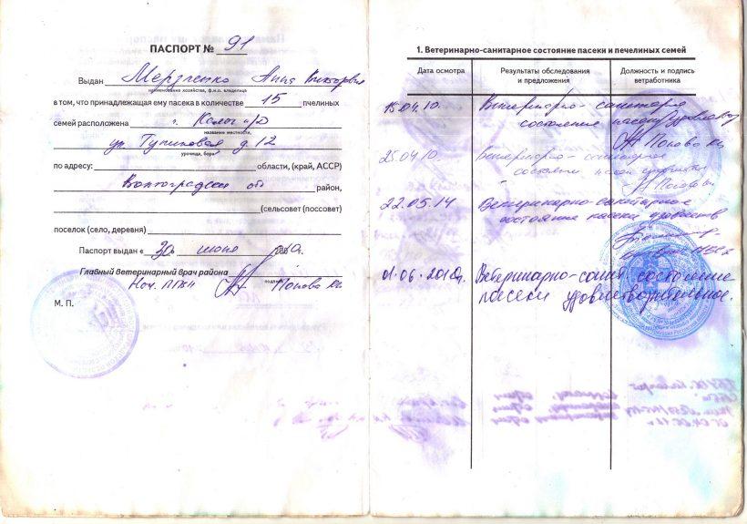 паспорт-2