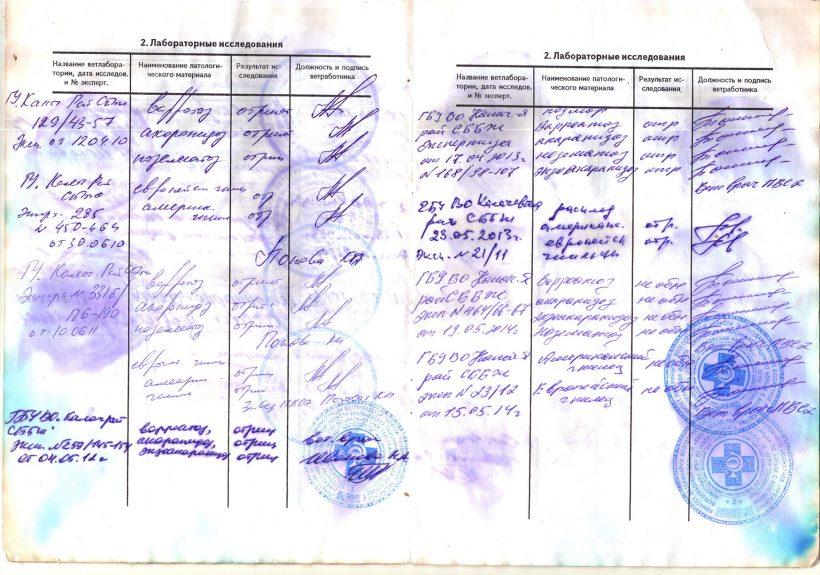 паспорт-3