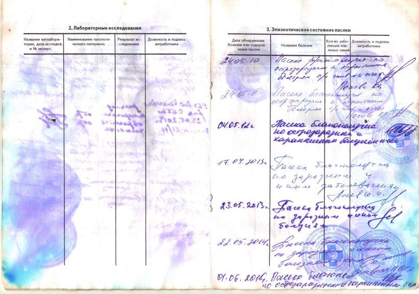 паспорт-4